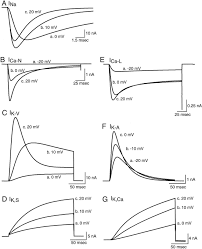Outstanding pocket rocket wiring diagram pictures best image