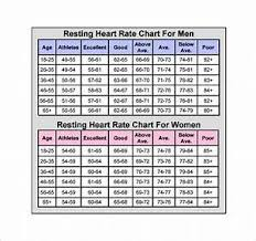 Sample Powder Burn Rate Chart