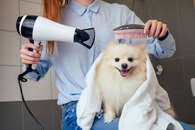 Big Hair, DO Care: Why You Should Invest in Your <b>Hair Dryer</b> - gap ...