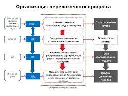 Реферат Организация перевозки ru Организация перевозки товаров реферат