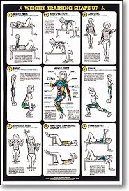 Weight Training Chart With Pictures Weight Training Shape Up Fitness Chart F3