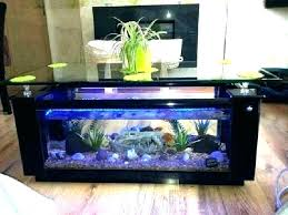 fish tank coffee table with in india