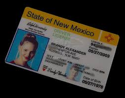 Drivers License Isabel's - Roswell Heigl