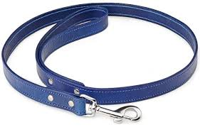 Blue Dog Leash - DOGMOUNT