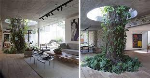 Plant Interior Design Cool Decorating Design
