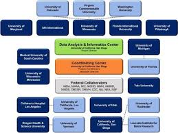 A Description Of The Abcd Organizational Structure And