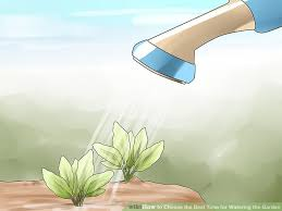 image titled choose the best time for watering the garden step 1