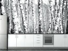 white birch tree wallpaper birch forest wall mural black white birch tree wallpaper