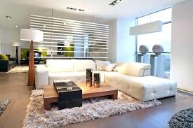 decoration pictures of area rugs in living rooms attractive for room unique rug modern with