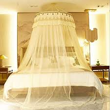 Amazon.com: Mosquito Net Court Style Bed Canopy For 1.5-2m Bed Fly ...