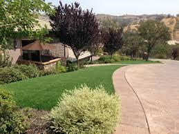 artificial turf cost corona de tucson arizona lawn and garden front yard landscaping
