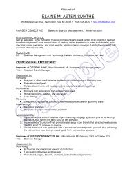 Sales Resume Objective Examples New Example Banking Sales Resume
