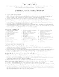 Business Resume Example Simple It Business Analyst Resume Examples Intelligence Example Samples