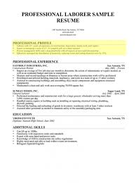 How To Write A Resume Profile 4 Example Template