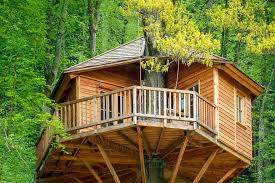 Treehouse Accommodation  Design Of Your House U2013 Its Good Idea For Treehouse Accommodation