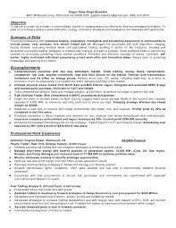 Best Resume Formats Free Samples Examples Format Download design com  Professional Resume Template Services