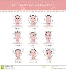 diffe face shapeakeup vector
