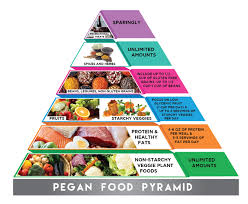 Food Pyramid Project Graphic Design For A Company By Hasithm2013 Design 19739207
