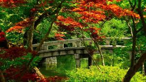 Wallpaper Jardines Japoneses - Novocom.top