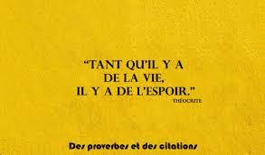 Citation Sur La Vie Et Lespoir Citations Proverbes Sur âme Sœur