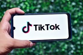 How TikTok Helped Create A Fashion Brand | PYMNTS.com