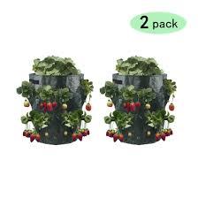 Drop Ship <b>2Pcs</b>/set <b>Plant</b> Strawberry Tomato <b>Grow Container</b> Bag ...