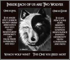 white wolf and black wolf fighting. Simple Wolf Early In My Christian Walk I Heard About An Old Indian Story The White  Wolf And Black That Live Us The Represents Spirit Of  With White Wolf And Black Fighting O
