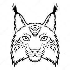 рисунки рыси рысь векторное изображение Komissar008 82786220