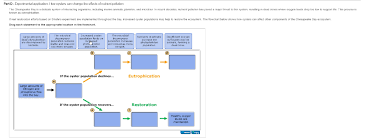 Components Of Ecosystem Flow Chart Solved The Chesapeake Bay Is A Delicate System Of Interac