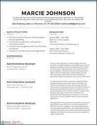 40 Lovely Great Resume Examples 40 Best Professional Resume Mesmerizing Resume Layout 2017