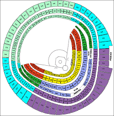 Rfk Stadium Concert Seating Chart 74 Qualified Rfk Stadium Seating Capacity