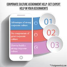 expert management assignment help on corporate culture organizational culture assignment help