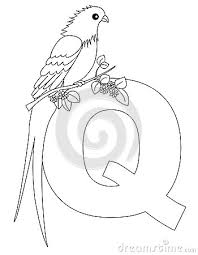Small Picture Quetzal Coloring Page Color 3gif Coloring Pages Maxvision