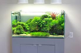 Amazing Aquarium Design 10 Amazing Aquariums Submitted By Our Users Nualgi Aquarium