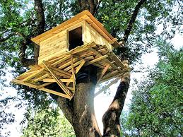 Simple tree house ideas for kids Cozy Bedroom Tree House Ideas Kids Builders In Kids Tree Houses Appealing Designs For Kids Garages Tree Latraverseeco Magic Tree House In The Middle Of Fir Forest And Few Ideas For