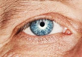 ophthalmologists retina