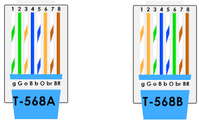 cat5e vs cat6 cable which do you choose? Category 5 Wiring Diagram Wire Trailer Connector