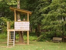 Best 25 Simple Tree House Ideas On Pinterest Diy Tree House Media