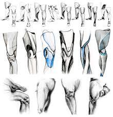 Prosthetic Design 4 Prosthesis Hi Koo