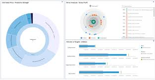 Ibm Cognos Analytics 11 1 Raised The Bar Ecapital Advisors