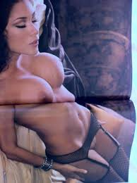 Arianny Celeste S Hot Playboy Collectible