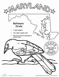 2dbeb25ca37bfc064566ad39ce71379d maryland state bird 50 states, free coloring pages and social on states worksheets