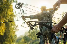 Compound Bow Arrow Weight Chart The 12 Best Compound Bows Reviewed Revealed 2019 Hands