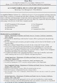 Objective For Social Work Resume Resume Objective Social Work Buildbuzz 42