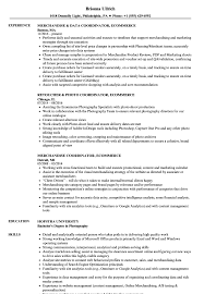 Ecommerce Resume Pdf Commerce Testing Examples Executive Skills