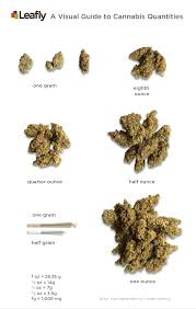 Weed Gram Chart What Does 1 Gram Of Cannabis Look Like A Visual Guide To