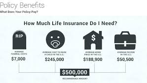 Instant Online Life Insurance Quote Extraordinary Whole Life Insurance Quotes Online Plus Test Get Universal Instant