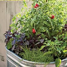 Small Picture Plant a One Pot Vegetable Garden Vegetable garden Gardens and