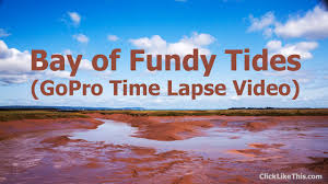 Tide Chart Wolfville Ns 9 Amazing Bay Of Fundy Tides Timelapse Videos Nova Scotia