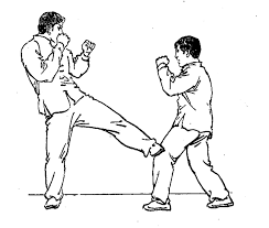 Risultati immagini per low kick